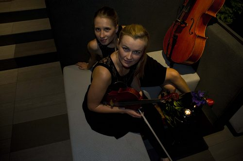 Need For Strings Belvedere